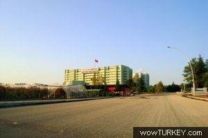 Tıp fakültesi balcalı hastanesi bölümler acil tıp anabilim